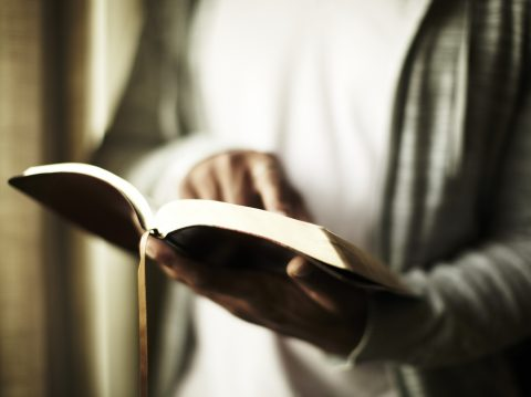 A person holding a bible
